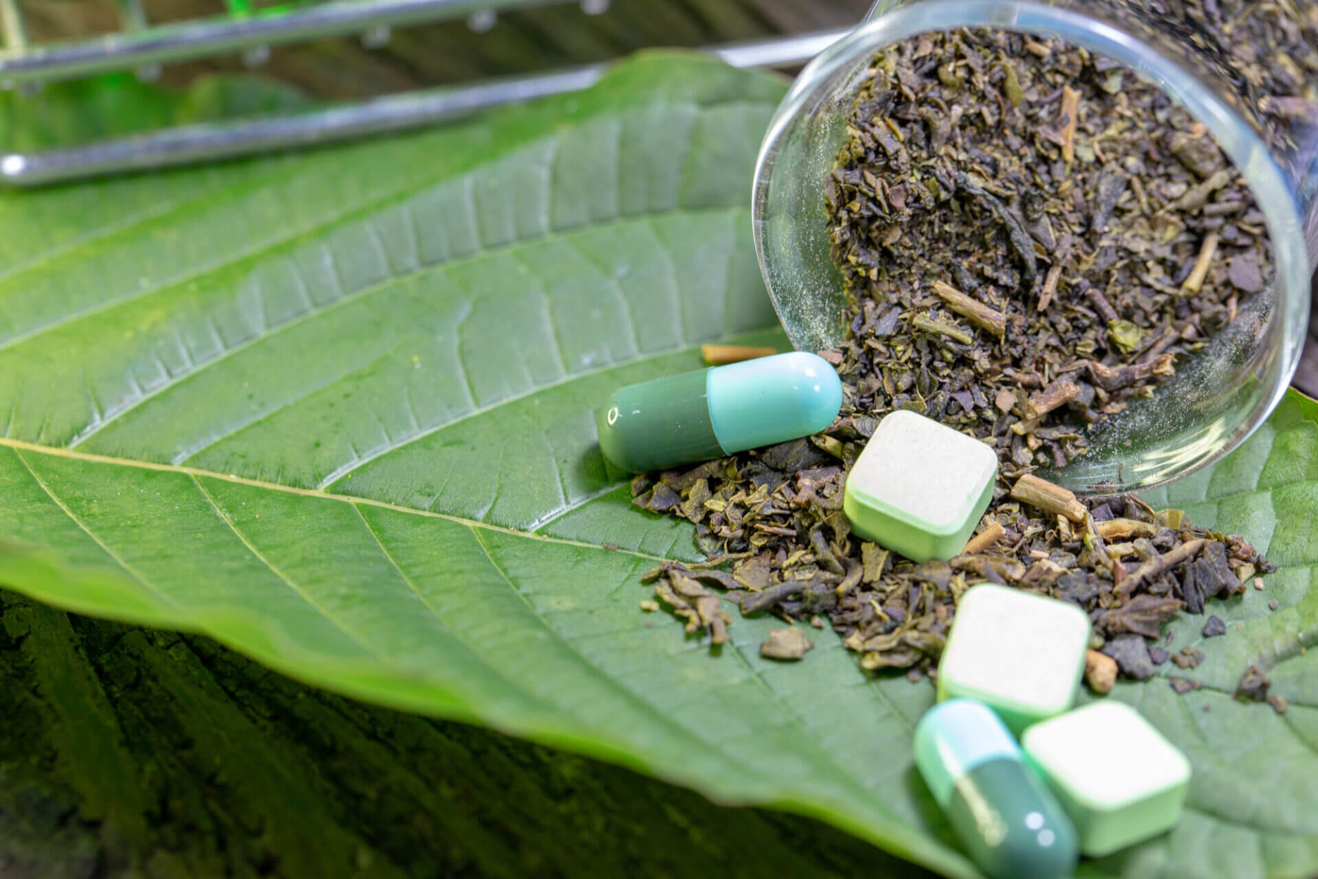 Kratom Extract Vs Kratom Powder How To Choose The One For You