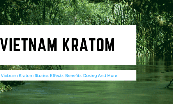 What Is Vietnam Kratom?